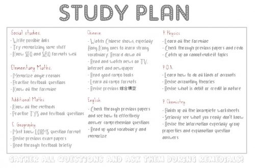 sample of study plan essay